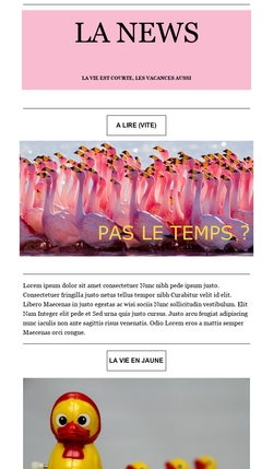 campagne_eMailing_44